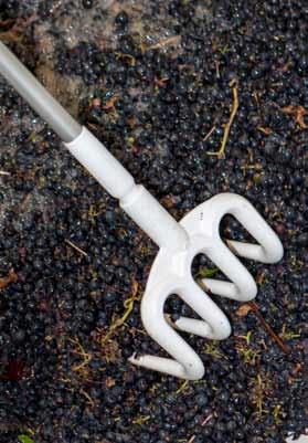 VIKAN travail du raisin